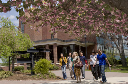 Students stroll under the cherry blossoms on Teaneck Campus in the spring.