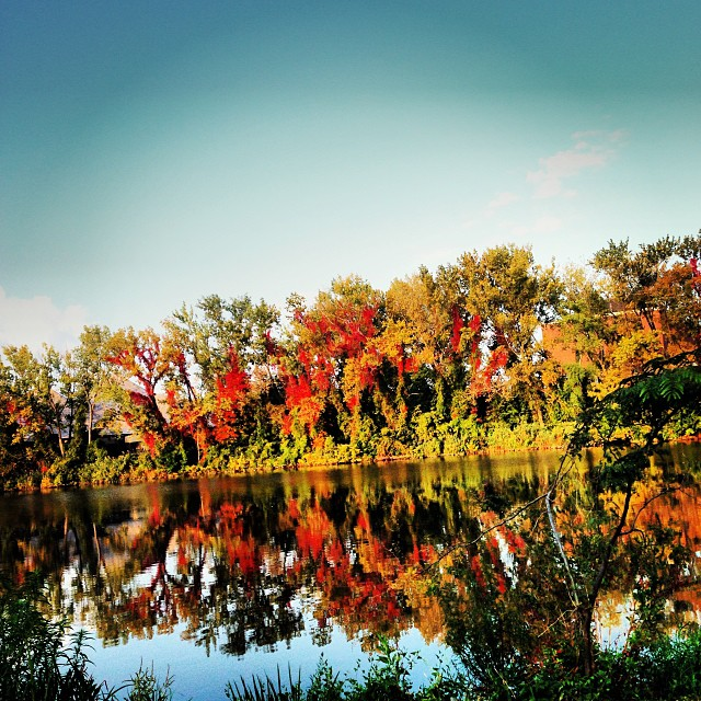 Fall colors on Hackensack River