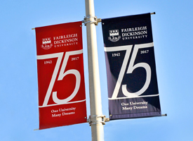 75th banners with sky